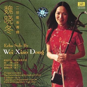 Erhu Solo by Wei Xiao Dong