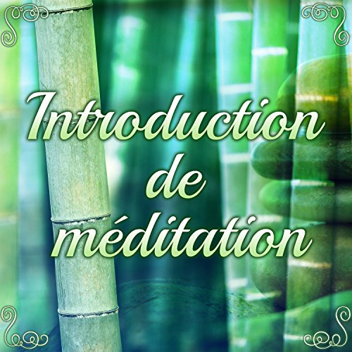 Zafu: Coussin de méditation
