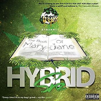 Hybrid SZN
