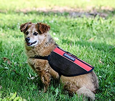 Liopard Light Weight Dog Harness for Service Dogs & Emotional Support Dogs - Reflective Safety Vest - All Sizes
