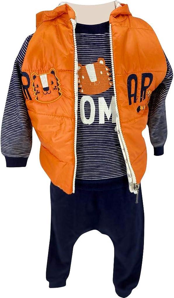 3 Piece Hooded Vest, T Shirt and Sweatpants Boys 100% Cotton 3 to 18 Months (Lion)