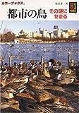 都市の鳥―その謎にせまる (カラーブックス)