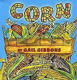 corn preschool picture book