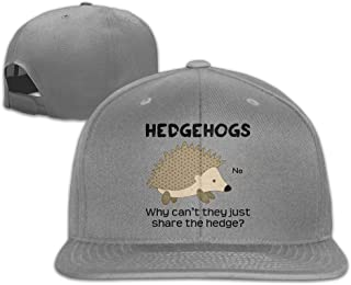 Fsdlmkrhl Why Cant Hedgehogs Share The Hedge11 Unisex Adjustable Flat Bill Visor Dad Hat