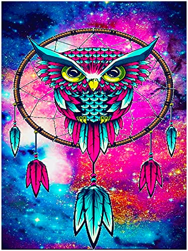 DIY 5D Diamond Painting Kits for Adults Kids and Beginners Full Drill Round Diamond Art Kits for Adults, Owl Crystal Crafts Diamond Painting by Number Kits Perfect for Home Wall Decor (11.8x15.8 inch)