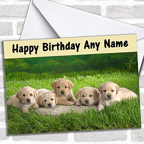 Vijf Labrador Puppy Honden Verjaardagskaart Met Envelop, Kan Volledig Gepersonaliseerd, Verzonden Snel & Gratis