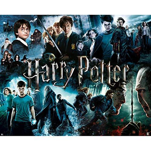 Paladone Harry Potter-Puzzle de 1000 Piezas (PP7527HPTX)