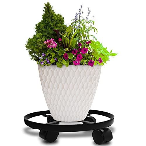 Plants Stands With Wheels Amazon Com
