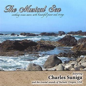 featuring Charles Suniga and the coastal sounds of Yachats, Oregon, USA