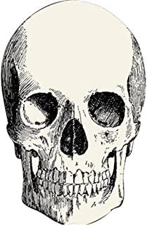 Hester & Cook Paper Placemat, Pad of 12 Die Cut Skull