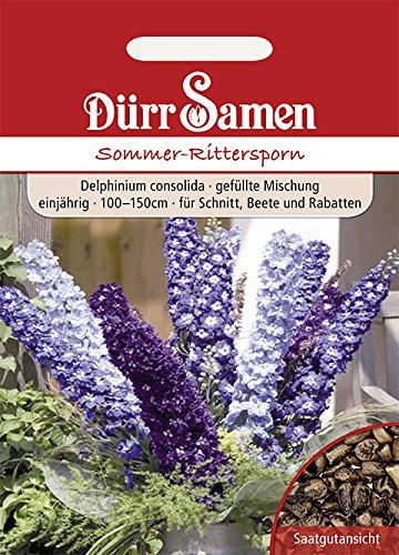 Dürr-Samen - 200 x Sommer-Rittersporn Mischung Saatgut für Balkon, Garten & Hochbeet - Rittersporn Blumen Samen Mischung 100 - 150 cm einjährig - Rittersporn Schnittblumen Saat als Hintergrundpflanze