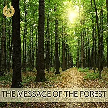 The Message of the Forest