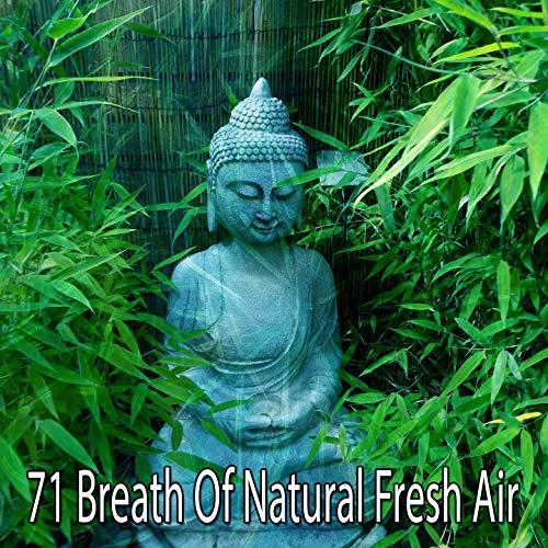 healthy nature resource - 4