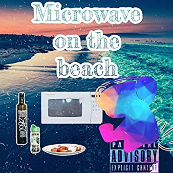 Microwave on the beach