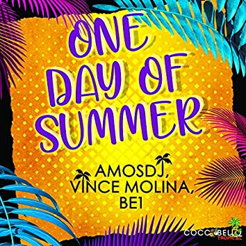 One Day of Summer