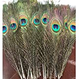 SHUO Natural Peacock Feathers 10'-12' with Eye Peacock Tail Feathers(25pack)