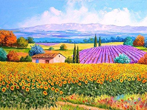 Malowanie według liczb_Piękne morze kwiatów_obraz na płótnie dla dorosłych i dzieci, szczotkami i farbami akrylowymi_prezent_30x50cm_Ramka do majsterkowania