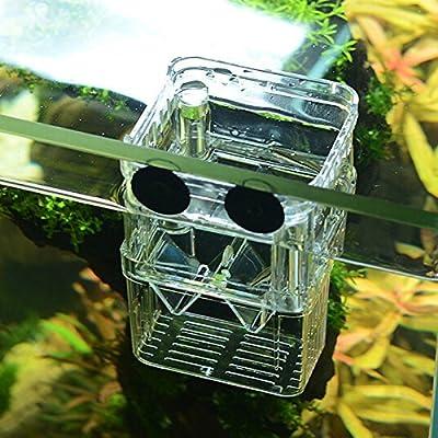 SENZEAL S Size Plastic Fish Breeding Box Isolation Hatchery Box with 3pcs Pasteur Pipette for Aquarium Tank