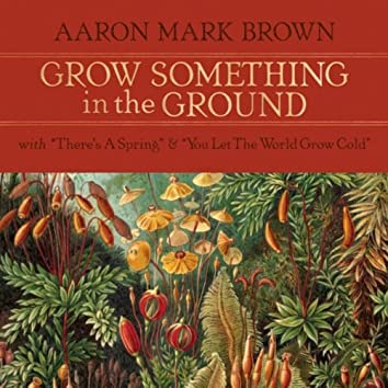 Grow Something in the Ground