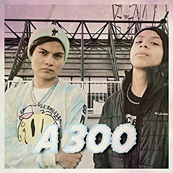 A 300