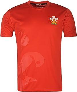 ウェールズ (Wales) ラグビー 半袖Tシャツ メンズ ファングッズ Poly T Shirt Mens
