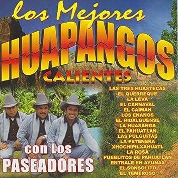 Huapangos Calientes: Las Tres Huastecas