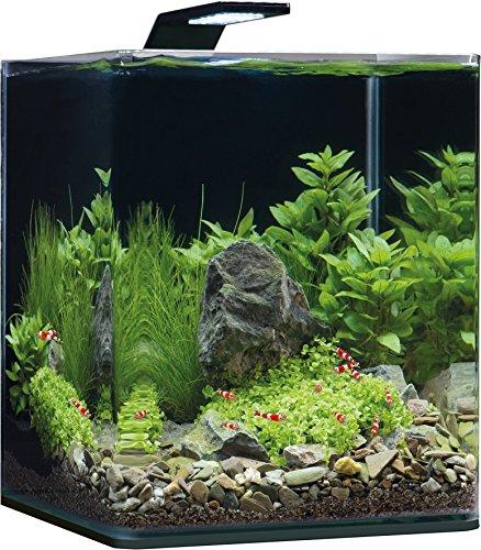 Dennerle Nano Cube Complete+ 20 Liter – Mini Aquarium mit Abgerundeter Frontscheibe – Komplett-Set - 3