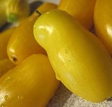 Tomato Seeds 50 Seeds Heirloom Tomato Banana Legs