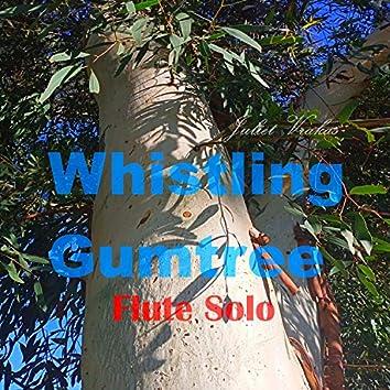 Whistling Gumtree Flute Solo
