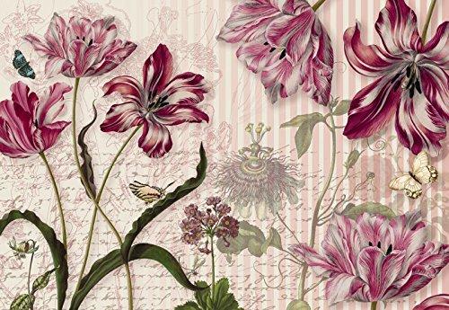 Fototapete National Geographics MERIAN 368x254cm rosa-rote Blüten Falter Skizzen