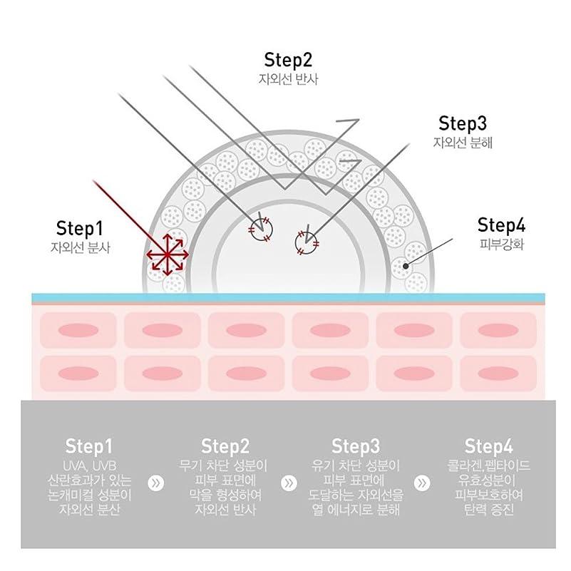 タンザニア評判私達セルピュチョンCレーザーサンスクリーン100(SPF50+/PA+++)50ml、Cell Fusion C Laser Sunscreen 100 (SPF50+ / PA+++) 50ml [並行輸入品]