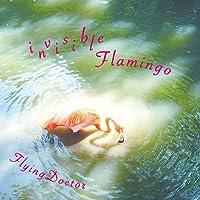 invisibleFlamingo