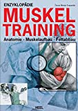 Enzyklopädie Muskeltraining: Anatomie - Muskelaufbau - Fettabbau - Óscar Morán Esquerdo
