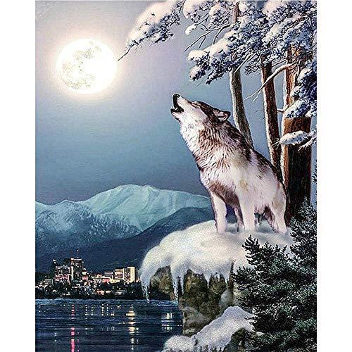 Diy5D Diamond Schilderij Dier Wilde Wolf Borduurwerk Cross Stitch Set(30x40cm)
