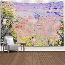 Sertiony Tenaly Tapestry Wall Hanging,Colorful Tapestry Wall Hanging 80X60 Inches Canyon is a Steepsided Canyon Carved Colorado River Adjacent College Dormitory Decorative Tapestry,Tapestry Wall Decor