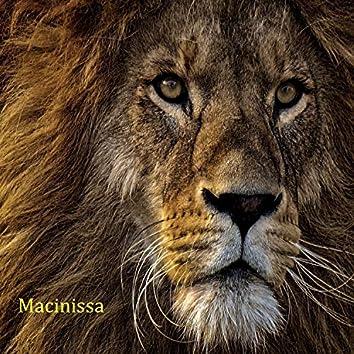La promesse du lion