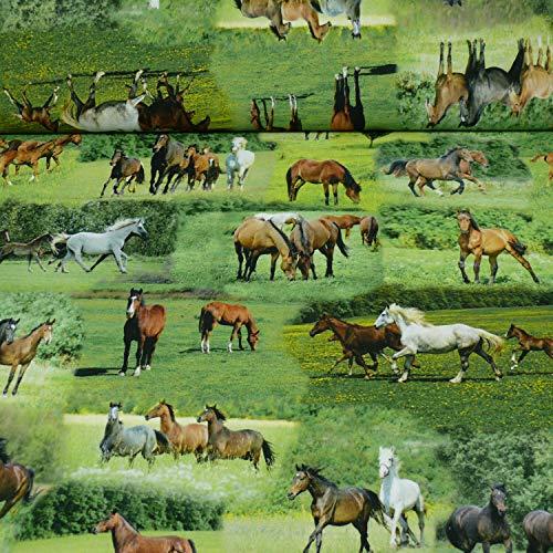 Dekostoff Tiffi von Swafing, Pferde grün/braun (Meterware ab 25cm x 140cm)