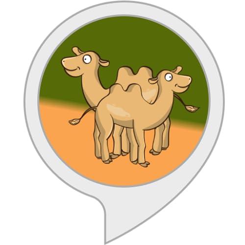 Kamelrechner: Wie viele Kamele seid ihr wert?
