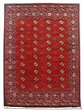 Alfombra tradicional persa hecha a mano Bokhara, lana, burdeos/rojo, grande, 251,6 x 336 cm, 8 pies 3 pulgadas x 11 pies