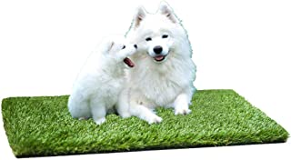 MTBRO Artificial Grass for Dogs, Professional Potty Training and Replacement Grass