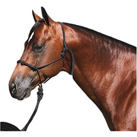 Professionals Choice Glitter Rope Halter w//Lead