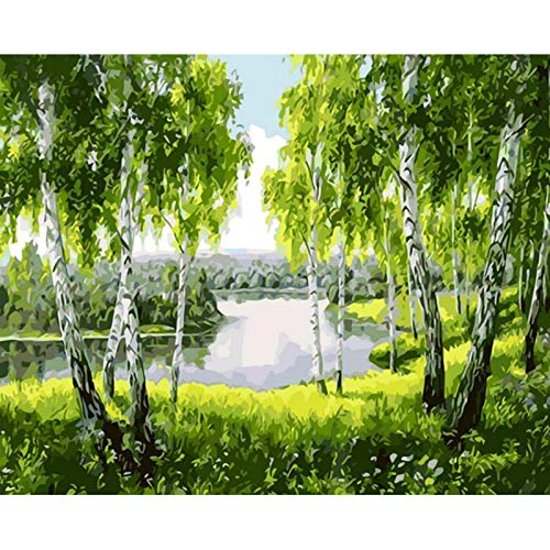 CUNYA Baum Landschaft DIY Malerei nach Zahlen Moderne Wandkunst Bild Leinwand Malerei Acrylfarbe Einzigartiges Geschenk 40x50cm