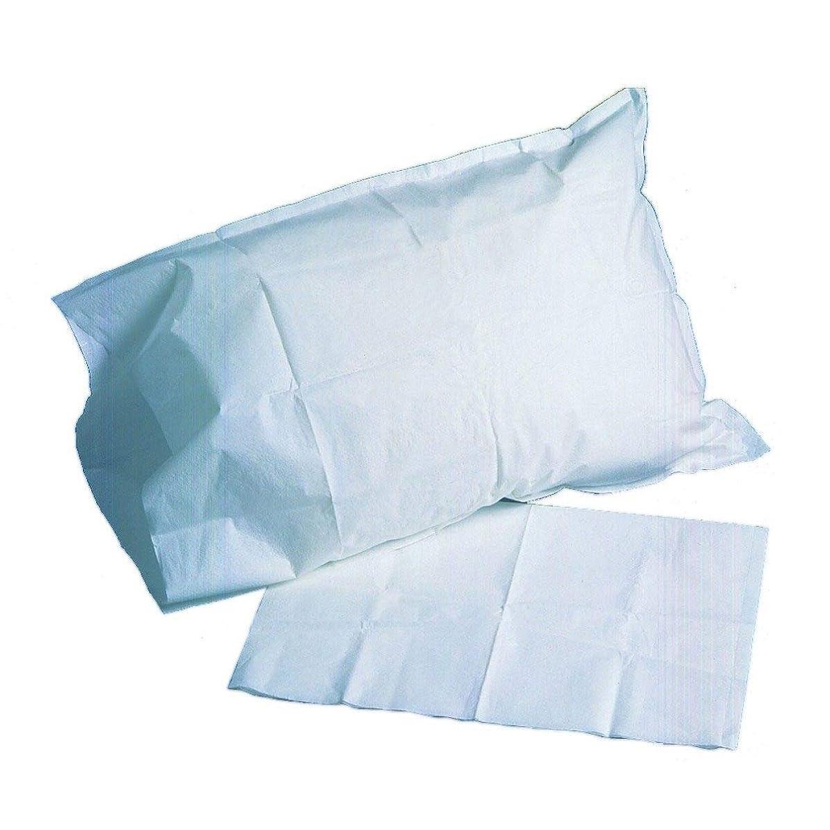 McKesson 18-918 Pillowcase, Tissue/Poly, Blue, 21