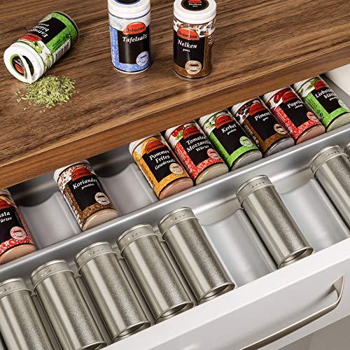 Sotech ORGA-Box® Gewürzgläsereinsatz Gewürzdoseneinsatz / 513 x 28 x 473 mm/Silbergrau/für Blum 60er Korpusbreite