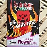Novedad Pimientos chile fantasma Raras Siembra Naga Jolokia Balcón vegetal de semillas SPCA KK128