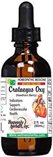Crataegus Oxyacantha Q - Mother Tincture – Hawthorn Berry Extract - Supports Cardiovascular Health and Regulate Blood Circulation – Made in USA – 2 fl. Oz – Homeopathic Medicine (Alcoholic Extract)