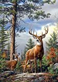 Buffalo Games - Hautman Brothers - Standing Proud - 300 Large Piece Jigsaw Puzzle