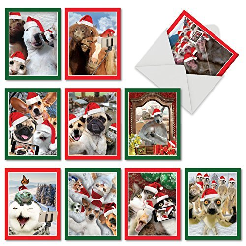The Best Card Company - 10 Christmas Animal Cards with Envelopes - Boxed Assorted Season's Greetings, Holiday Set (4 x 5.12 Inch) - Holiday Animal Selfie M2373XSG