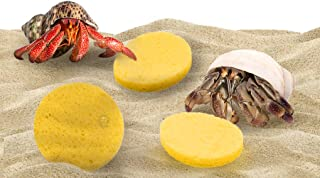 Luffy Sponges, Minerals Present Promote Healthy Shell Development, Assists Safer Drinking, Moisture Cocoon to Keep Crabs Moist, Easy Access to crabitat Water Dish