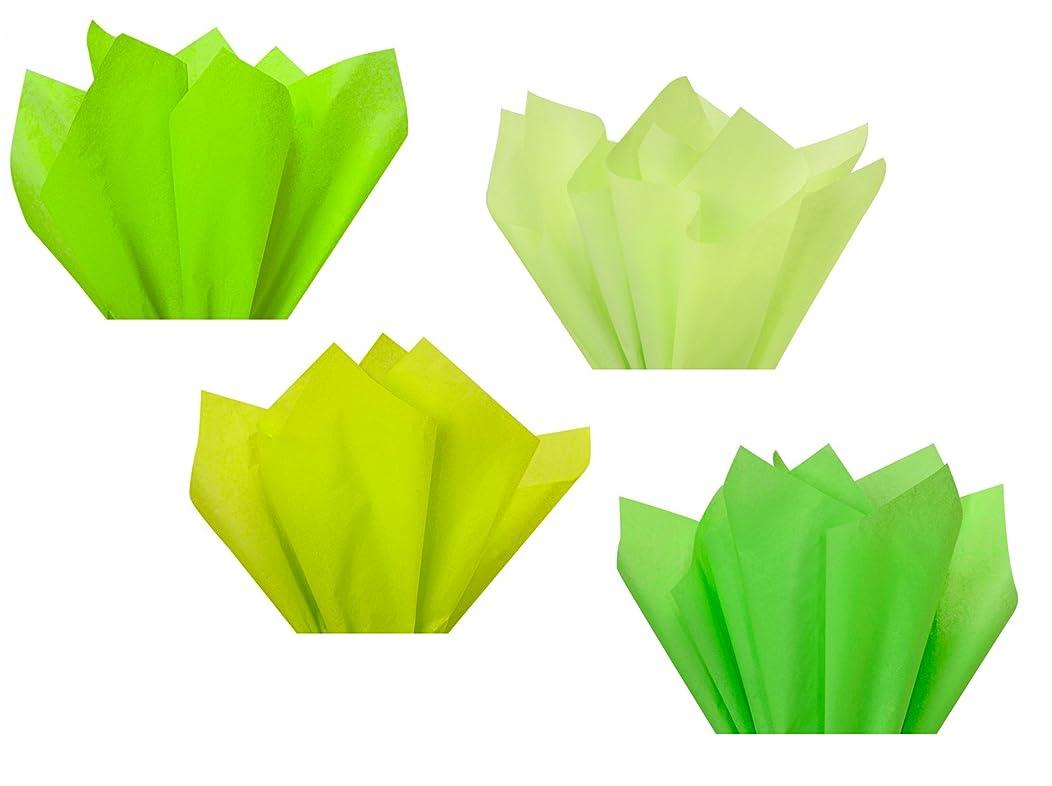 Neon Lime Green Assorted Mixed Color Multi-Pack Tissue Paper for Flower Pom Poms Art Craft Decor Wedding Bridal Baby Shower Party Gift Bag Basket Filler Decoration